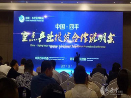 原叶环保有限材料公司董事长唐林出席东北亚博览会论坛